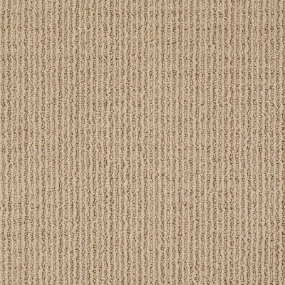 Anderson Tuftex Shaw Design Center Grand Appeal Baked Beige 00173_882SD
