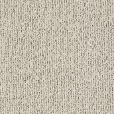 Anderson Tuftex Shaw Design Center Master Image Cement 00512_883SD