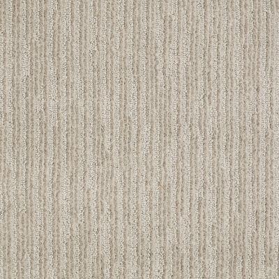 Anderson Tuftex Shaw Design Center Visual Comfort Cement 00512_885SD