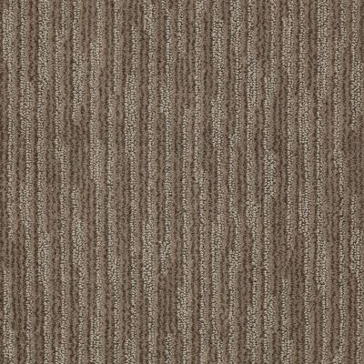 Anderson Tuftex Shaw Design Center Visual Comfort Simply Taupe 00572_885SD