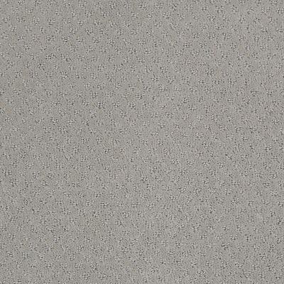 Anderson Tuftex SFA You Bring It Ash Mist 00511_899SF