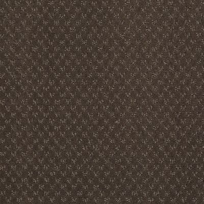 Anderson Tuftex SFA You Bring It Chocolate Curl 00757_899SF