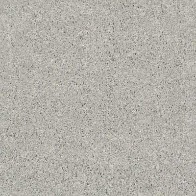 Anderson Tuftex Fido Pixie Dust 00112_944DF