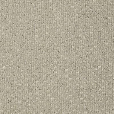 Anderson Tuftex Nala Cellini 00330_947DF