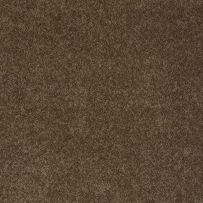 Anderson Tuftex Chipper Derby Brown 00703_956DF
