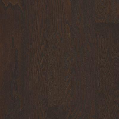 Shaw Floors Ashton Woods Homes Timeless 5″ Chocolate 07011_A021S