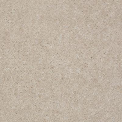 Shaw Floors Blazer II Driftwood 88120_A3988