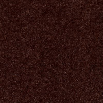 Shaw Floors Blazer II Chocolate Chip 88717_A3988