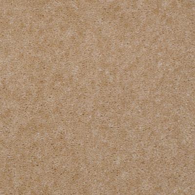 Shaw Floors Renegade Cork Tint 01132_A4101