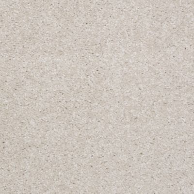 Shaw Floors Debut Lilac 00101_A4468