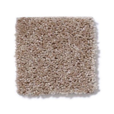 Shaw Floors Debut Crisp Linen 00702_A4468