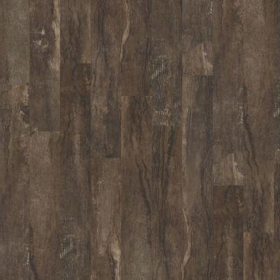 Shaw Floors Av Homes Titan Plus Fresco 00516_A607V