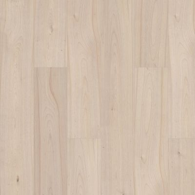 Shaw Floors Abbey Asc Rev Res Yukon Ridge Hdr Plus Ethereal 01069_AF900