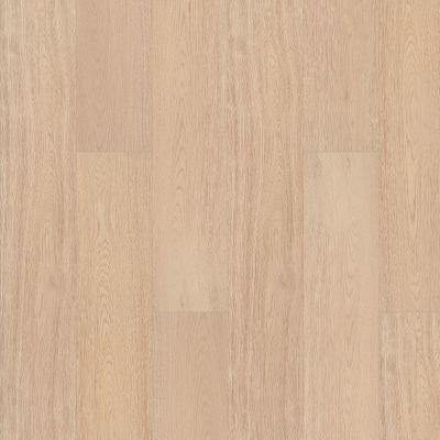 Shaw Floors Abbey Asc Rev Res Yukon Ridge Hdr Plus Mangata 02031_AF900