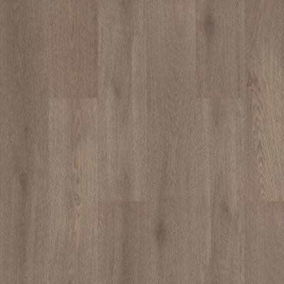 Shaw Floors Abbey Asc Rev Res Yukon Ridge Hdr Plus Cobblestone 05102_AF900