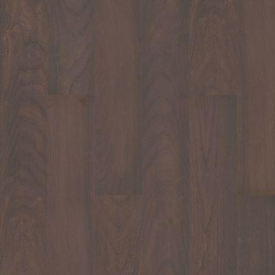 Shaw Floors Abbey Asc Rev Res Yukon Ridge Hdr Plus Simplicity 07095_AF900