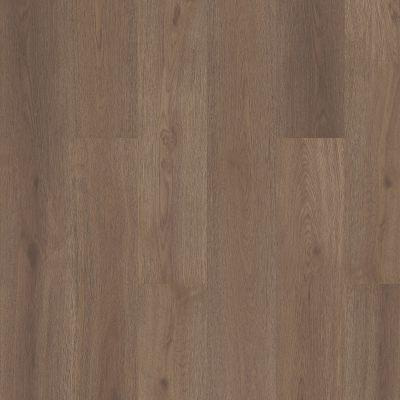 Shaw Floors Abbey Asc Rev Res Yukon Ridge Hdr Plus Glogg 07203_AF900