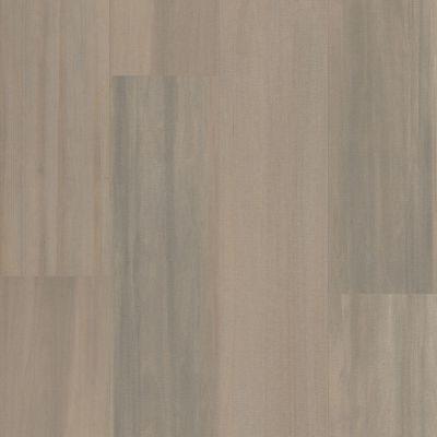 Shaw Floors Abbey Asc Rev Res Yukon Ridgehdrmxl Plus Tweed 01086_AF901