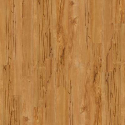 Shaw Floors Arkansas Flooring Connection Clear Springs Gobi 00274_AK611