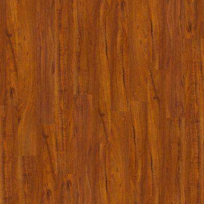 Shaw Floors Arkansas Flooring Connection Clear Springs Polo 00855_AK611