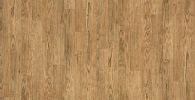Shaw Floors Vinyl Residential Holden Lindus 00206_AR611