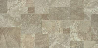 Shaw Floors Resilient Residential Holden Delphi 00301_AR611