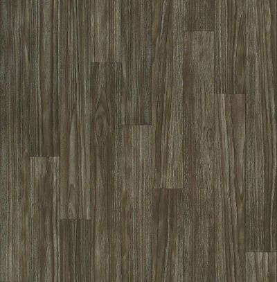 Shaw Floors Vinyl Residential Holden Thebes 00531_AR611