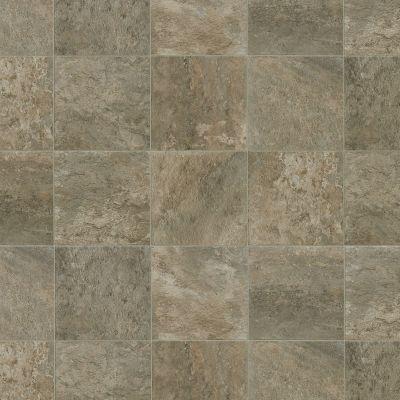 Shaw Floors Resilient Residential Hayden Pueblo 00139_AR616