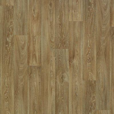 Shaw Floors Resilient Residential Hayden Nebraska 00202_AR616