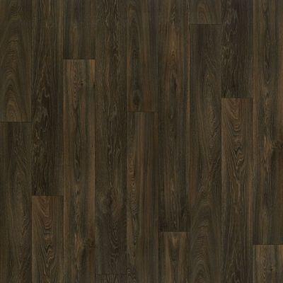 Shaw Floors Resilient Residential Carlton Dakota 00707_AR617