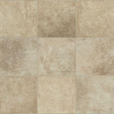 Shaw Floors Resilient Residential Clifton Crete 00131_AR618