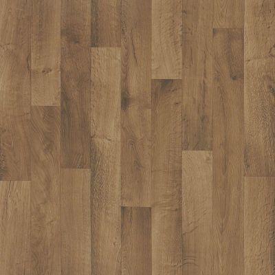 Shaw Floors Resilient Residential Clifton Parthenon 00705_AR618