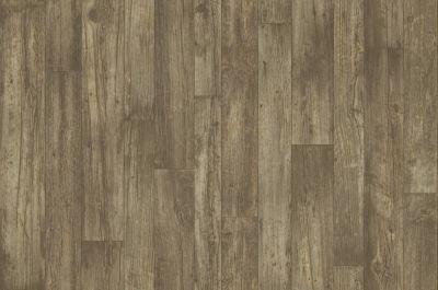 Shaw Floors Resilient Residential Wagner Gresham 00116_AR620