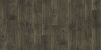 Shaw Floors Resilient Residential Wagner Helens 00507_AR620