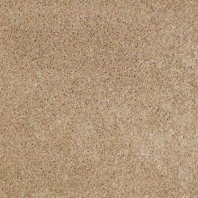 Anderson Tuftex Natural State 1 Sandcastle 00113_ARK51