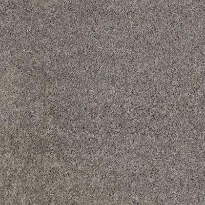 Anderson Tuftex Natural State 1 Titanium 00544_ARK51