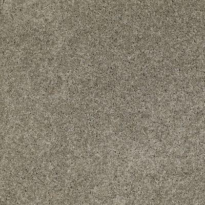 Anderson Tuftex Natural State 1 Wild Dove 00555_ARK51
