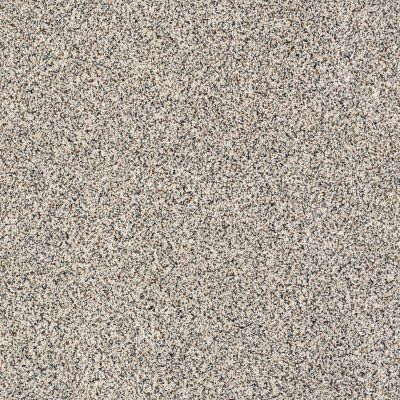 Shaw Floors Caress By Shaw Softly Surreal Classic II Linenfold 0154A_BCC06