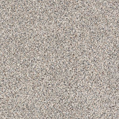 Shaw Floors Caress By Shaw Softly Surreal Classic II Cobblestone 0551A_BCC06