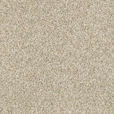Shaw Floors Caress By Shaw Delicate Distinction Classic I Celtic 0341B_BCC17