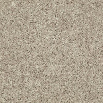 Shaw Floors Home Foundations Gold Bx001 Cappuccino 00747_BX001