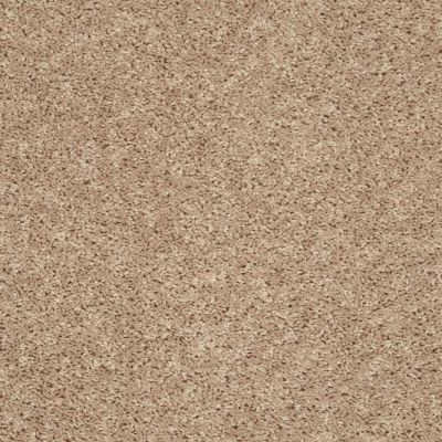 Shaw Floors Home Foundations Gold Bx100 Natural Flax 00105_BX100
