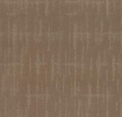 Shaw Floors Caress By Shaw Rustique Vibe Lg Raw Wood 00720_CC01B