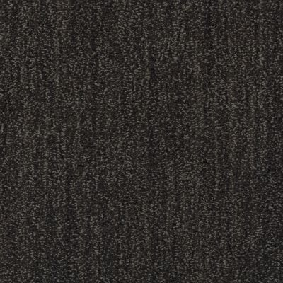 Shaw Floors Caress By Shaw Ombre Whisper Lg Wrought Iron 00533_CC06B