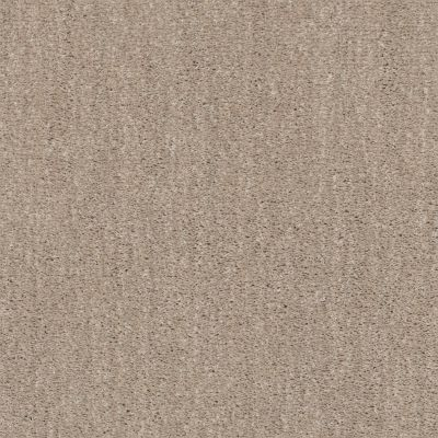 Shaw Floors Caress By Shaw Ombre Whisper Lg Natural Beauty 00721_CC06B