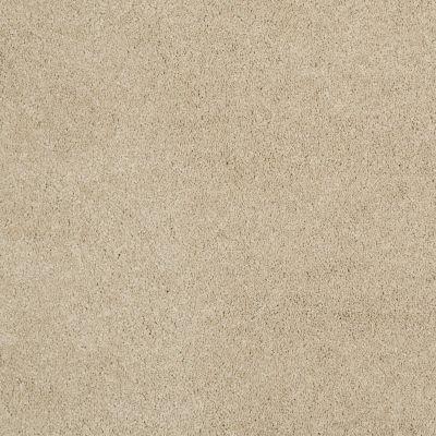 Shaw Floors Caress By Shaw Cashmere I Lg Gentle Doe 00128_CC09B