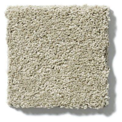 Shaw Floors SFA Cashmere I Lg Spruce 00321_CC09B