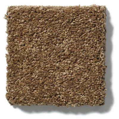 Shaw Floors SFA Cashmere I Lg Tobacco Leaf 00723_CC09B