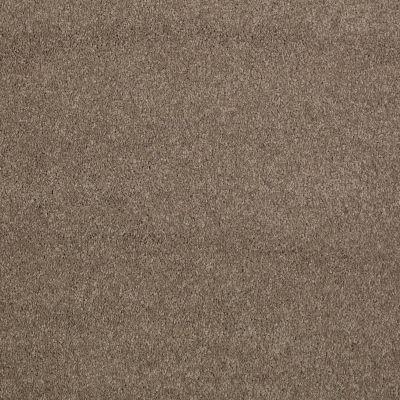 Shaw Floors Caress By Shaw Cashmere I Lg Mesquite 00724_CC09B