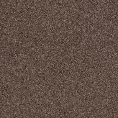 Shaw Floors Caress By Shaw Cashmere II Lg Spring – Wood 00725_CC10B